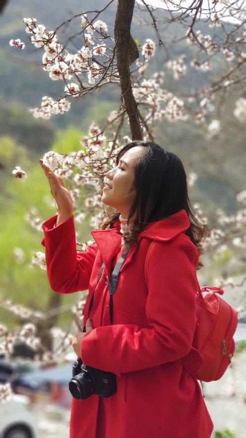 Feels like I am holding cherry blossoms!