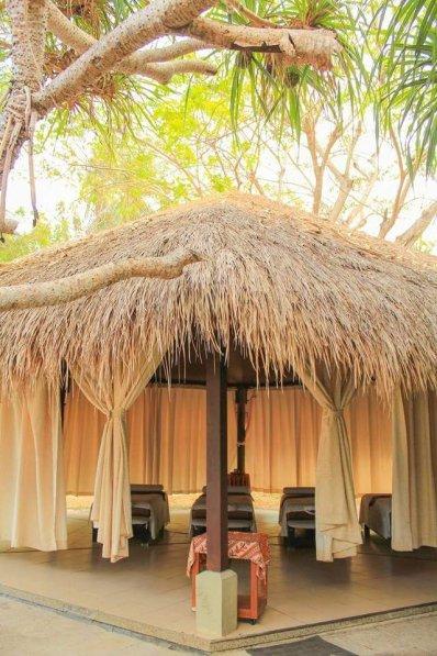 The massage parlor
